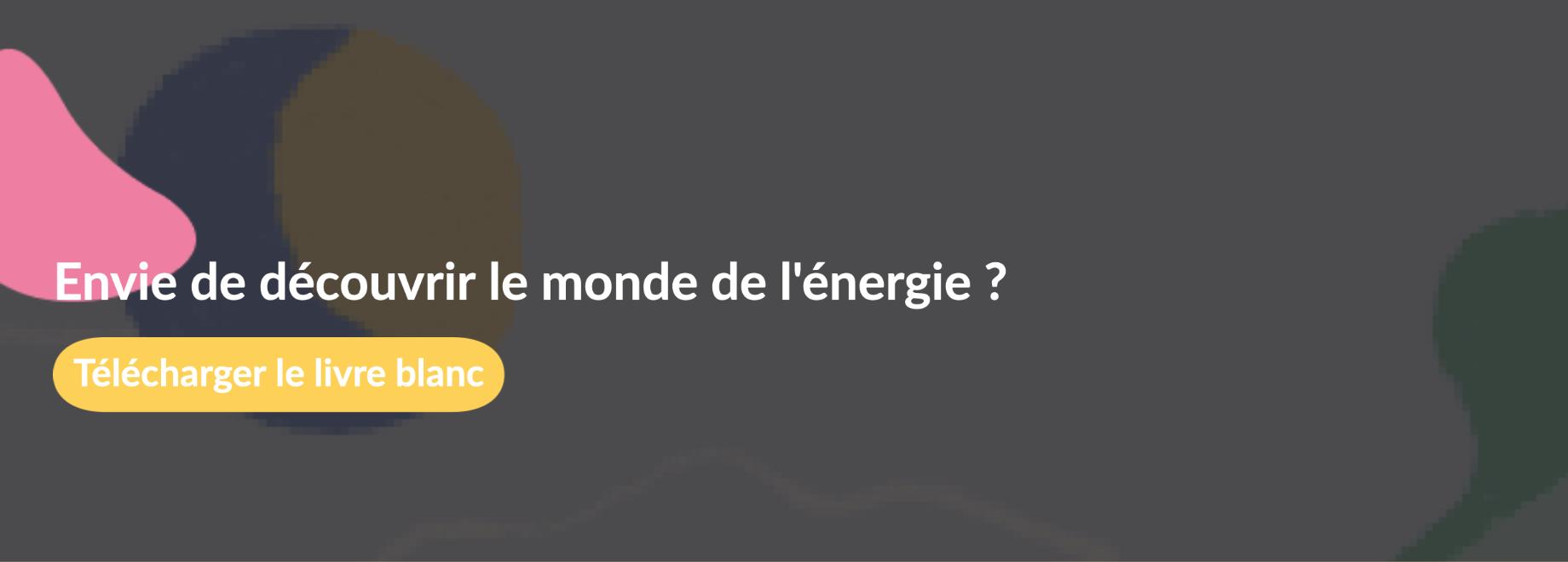 Découvrez une sélection de 14 fournisseurs en énergie en France
